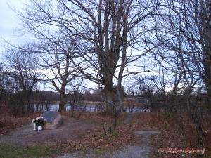 Peak-Greenlaw Pioneer Cemetery, Ajax, Ontario