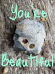 You're Beautiful, meme